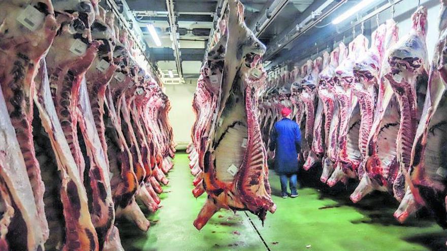 Cámaras de videovigilancia para el control del bienestar animal en mataderos