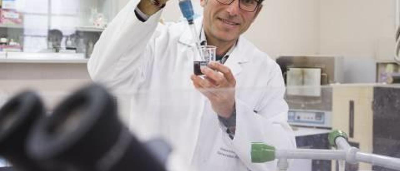 El investigador de la Universidad de Alicante César Bordehore, en el laboratorio.