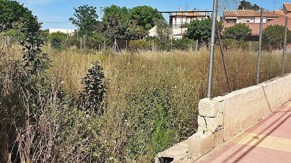 Parcela con alta vegetación en La Raya cercana al CEIP Nuestra Señora de la Encarnación (izda.) y un solar en la Contraparada de Javalí Viejo que sirve de vertedero (dcha.) | L.O.
