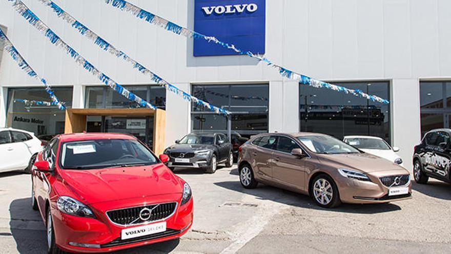 Ya puedes tener tu Volvo desde 140 euros al mes en Ankara Motor