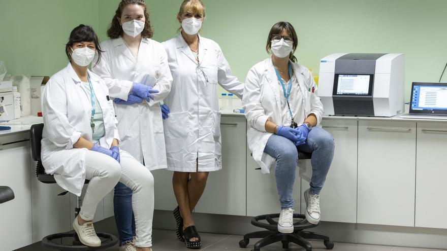 Investigadoras de Castelló analizan el consumo de mejillones en relación a parásitos intestinales