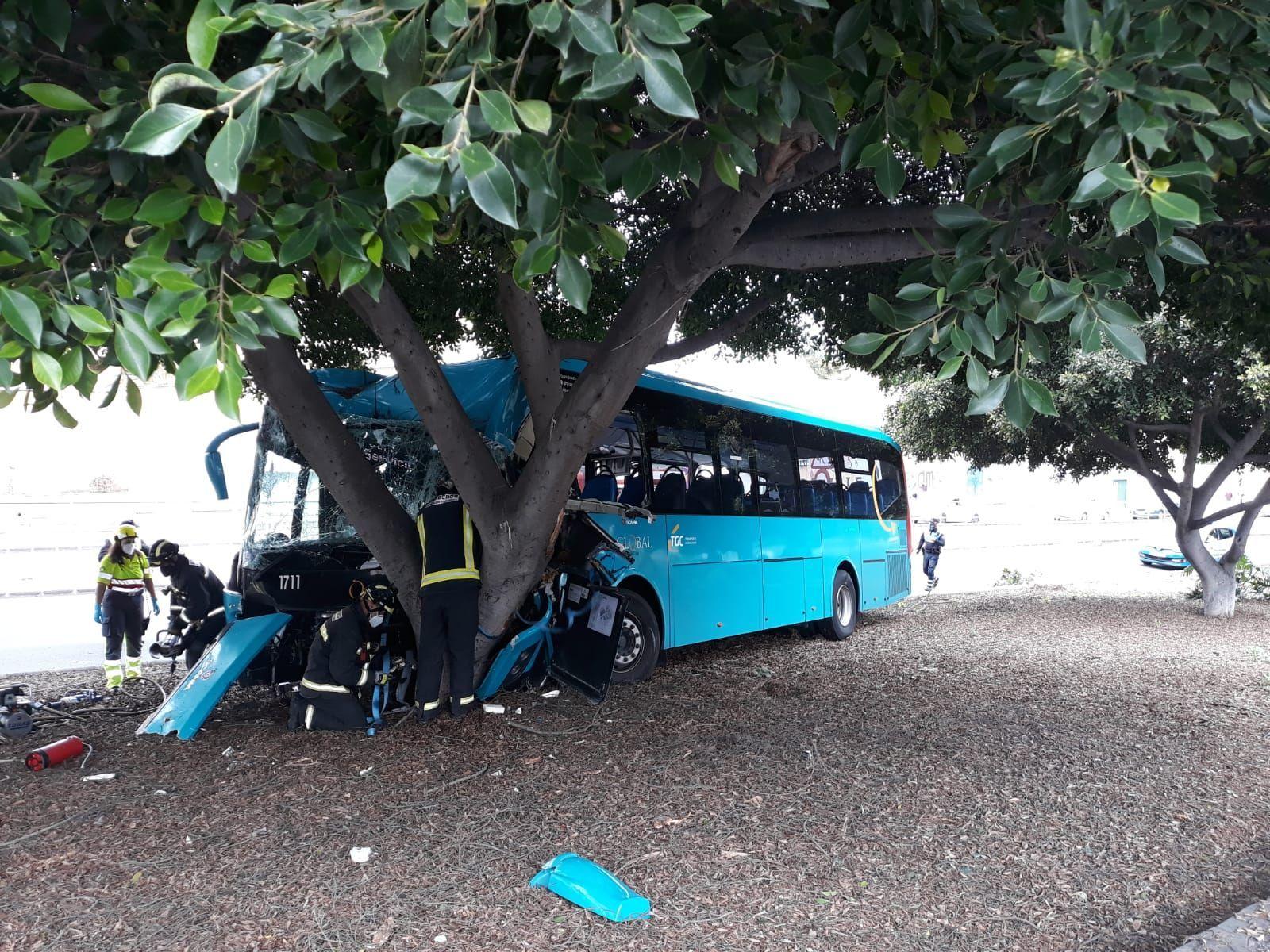 Una guagua se estrella contra un árbol en Gran Canaria