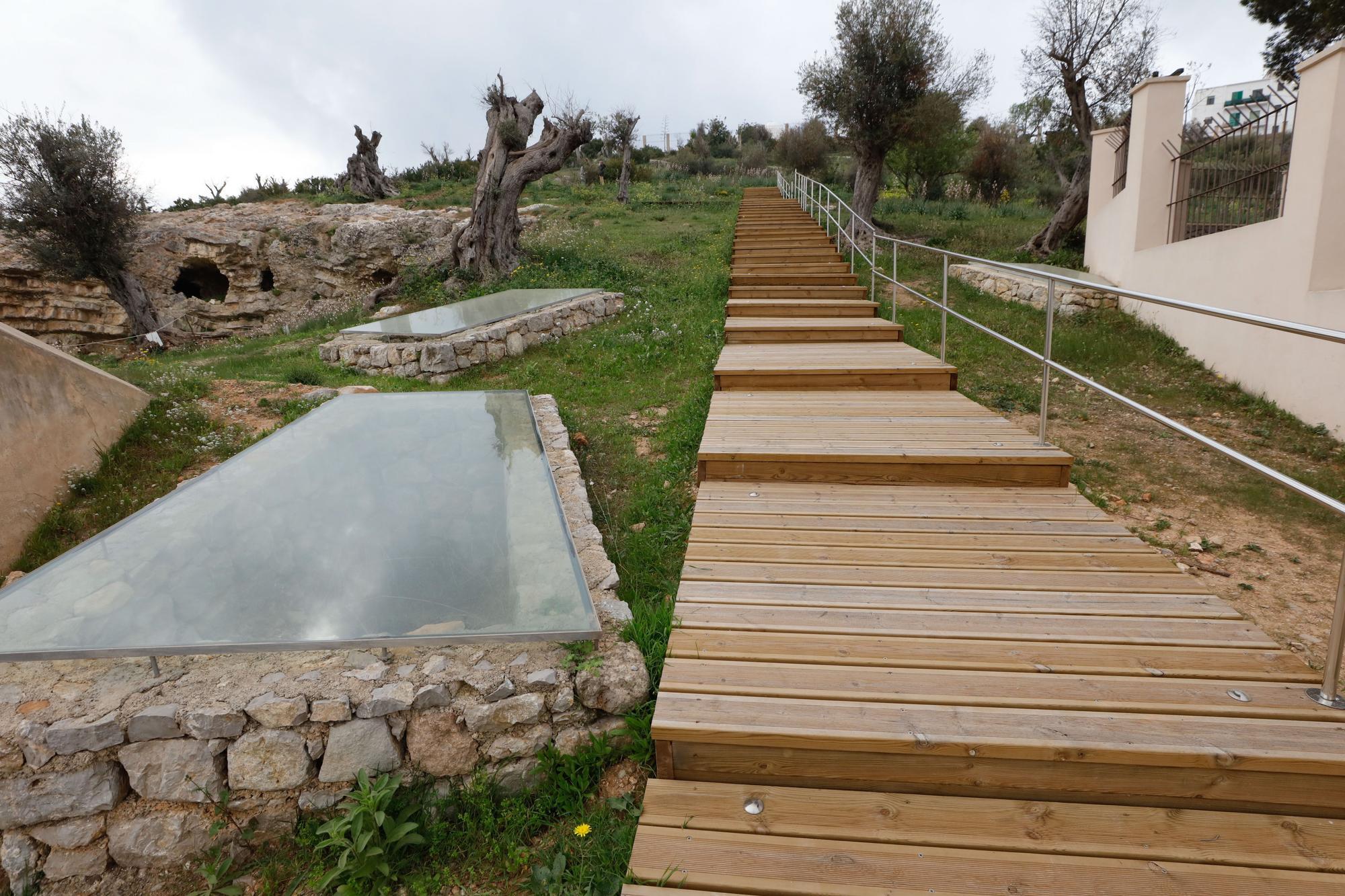 La necrópolis, un oasis dentro de Ibiza