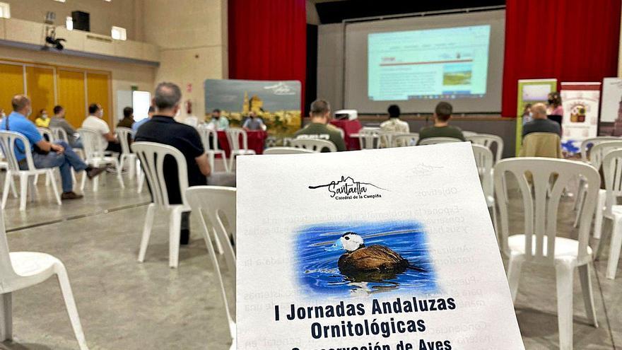 Santaella busca impulsar el turismo ornitológico en la zona