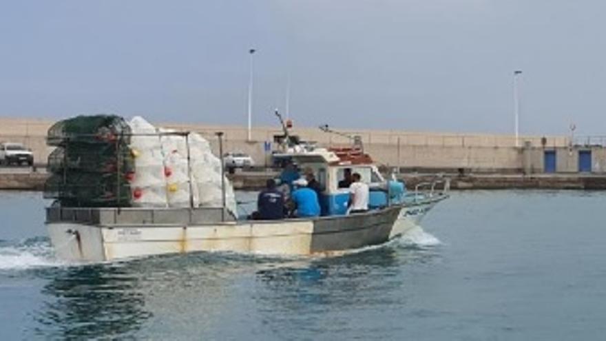 Una pesca experimental busca gambas en aguas de Corralejo