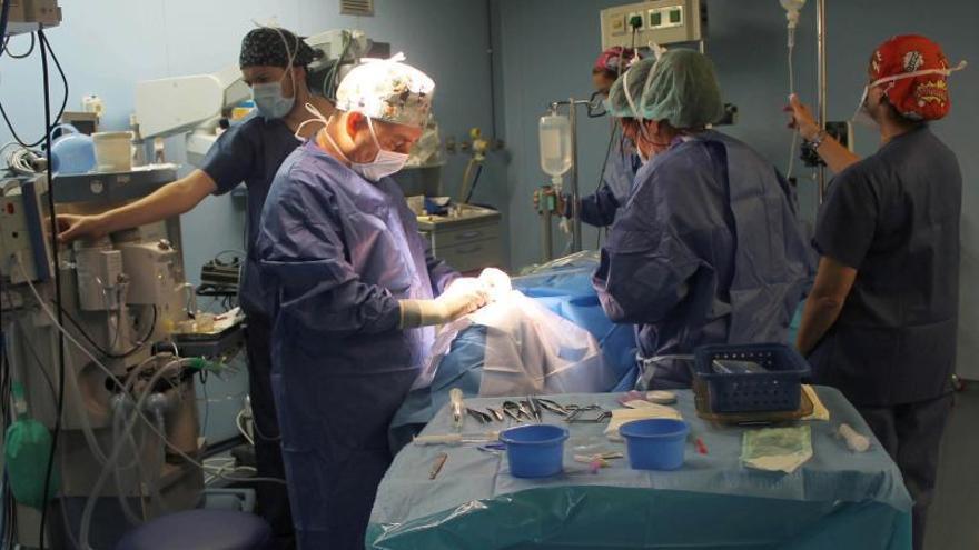 El 90% de las familias autorizan la donación de órganos al hospital
