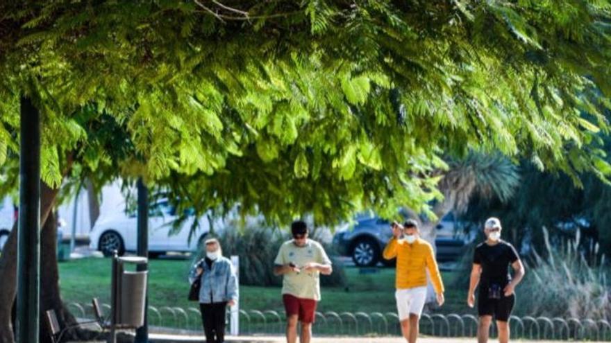 Dos personas cortan el cuello a un joven en el Parque Romano de Las Palmas de Gran Canaria