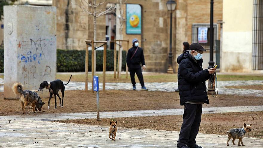 Los problemas en el jardín del Hospital obligan a la policía local a actuar 92 veces