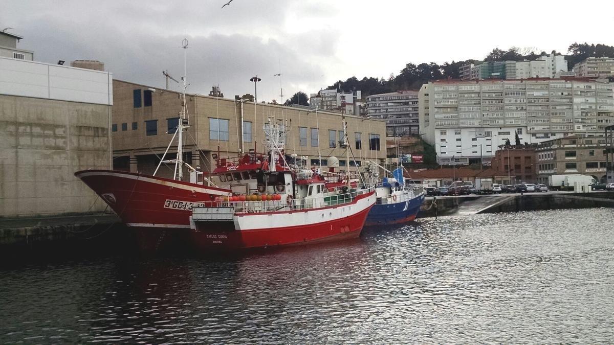Palangreros detrás del edificio de ARVI, en Vigo, en una foto de archivo. | A.A.