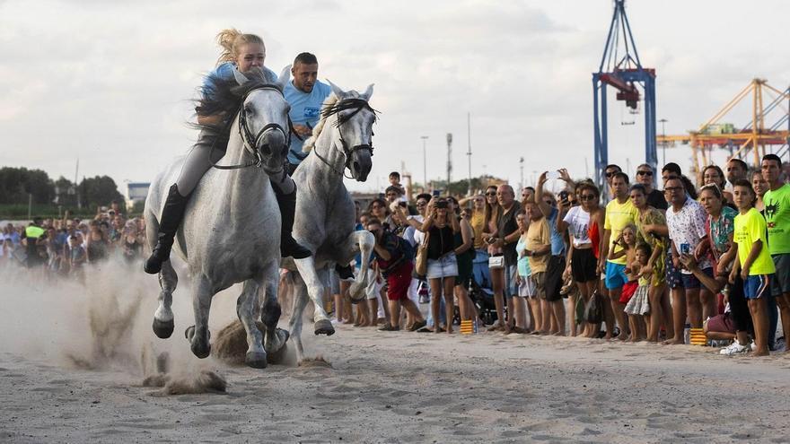 """Los caballos no saldrán a hacer """"Les Corregudes de Joies"""""""