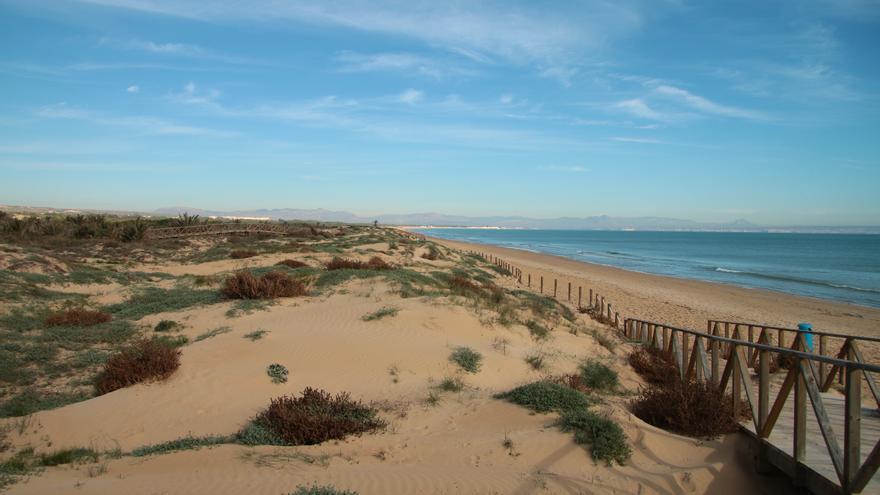 Un paseo entre las dunas y las playas de Guardamar del Segura