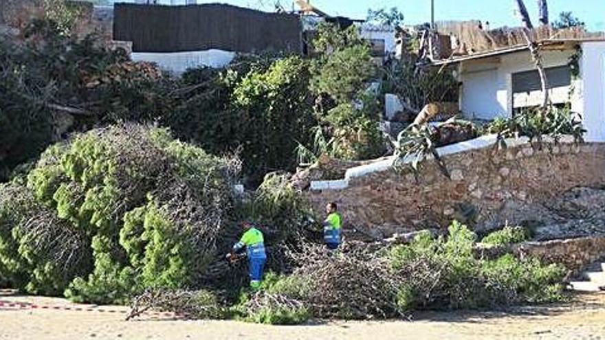 Los afectados por el temporal de Sant Antoni podrán pedir ayudas del Govern