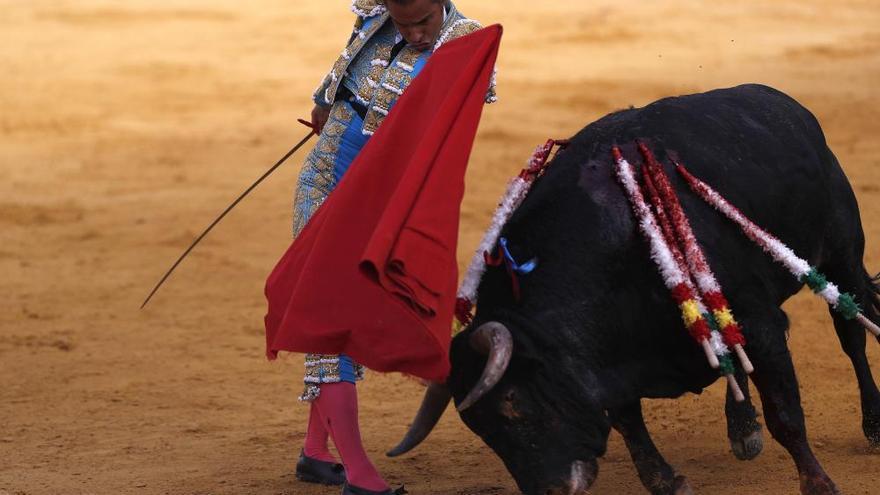 Indulto de Finito de Córdoba a un buen toro: la vulgarización de lo excepcional