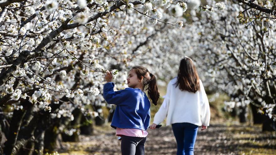 La primavera comienza este sábado y durará 92 días
