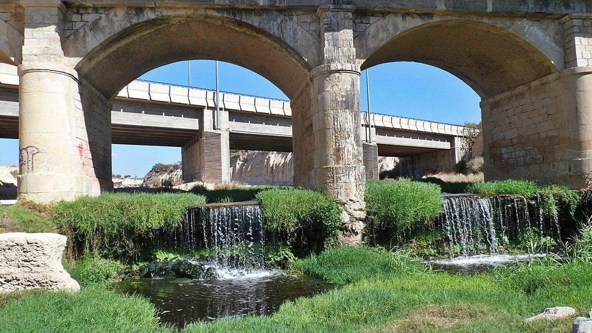 El agua de la depuradora ha creado un vergel en el río Seco a su paso por El Campello.   J.A.RICO