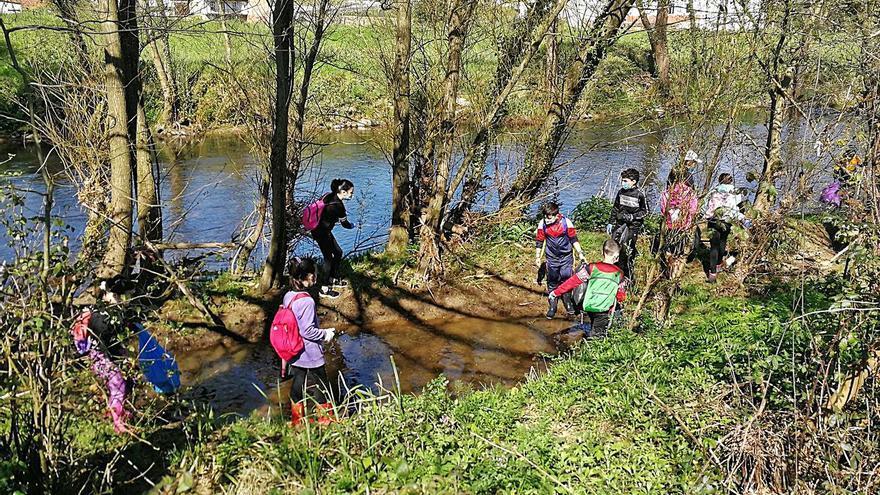 El río Cubia de Grado, más limpio gracias a los escolares
