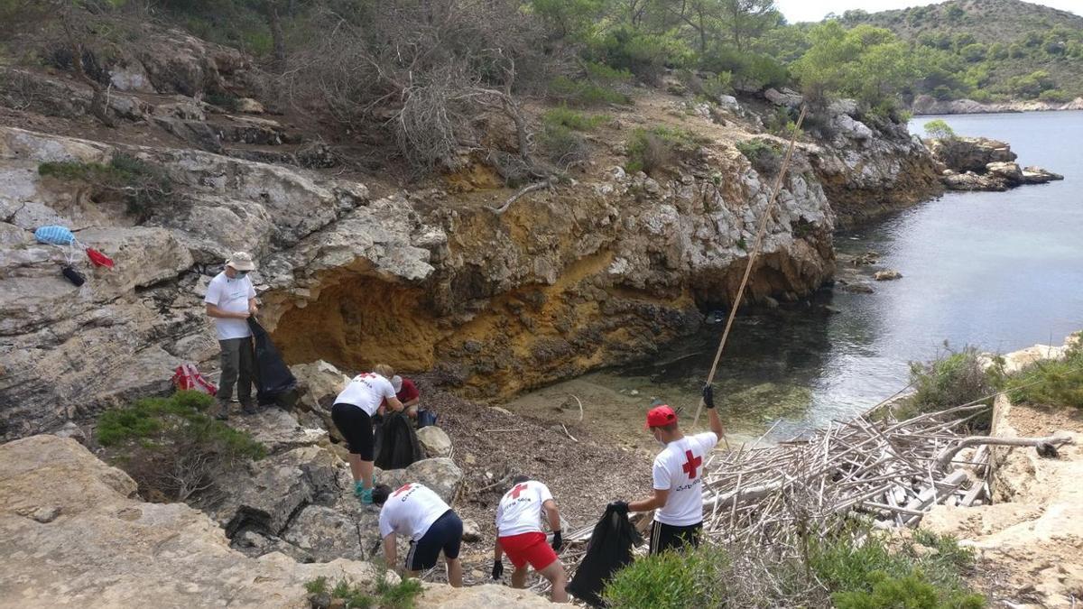 Voluntarios de la Cruz Roja han participado en la recogida de muestras en las playas de Cabrera.