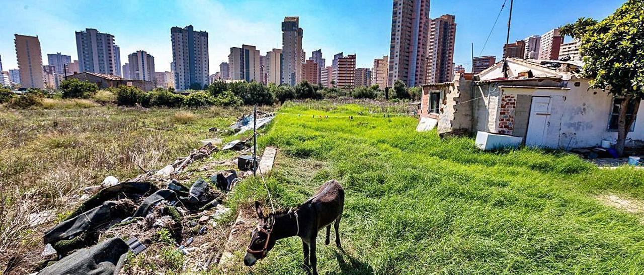 El plan Ensanche Levante se desarrollará sobre la partida de Armanello, cuya urbanización está paralizada desde hace dos décadas. DAVID REVENGA