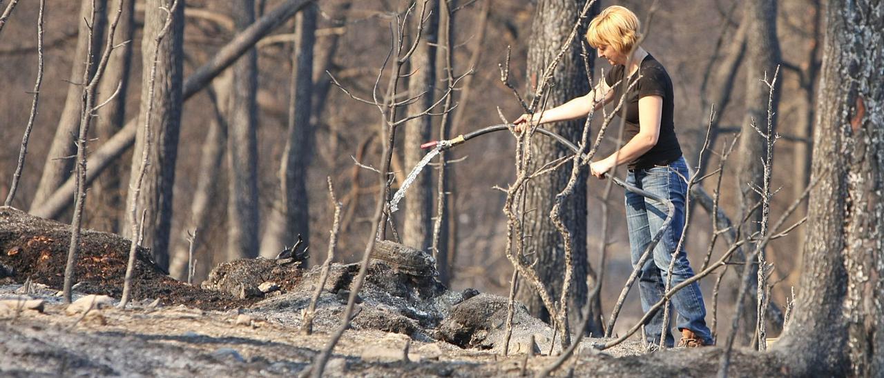 Una vecina de Agullent  refresca el suelo ya quemado  para prevenir que el fuego   resurja, en 2010.  Perales Iborra   PERALES IBORRA