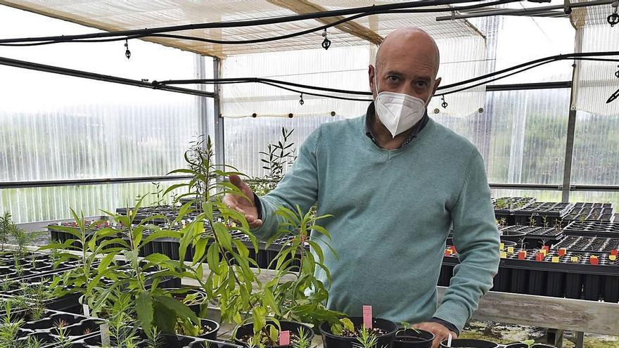 «El Jardín Canario está inmerso en una transformación muy importante»