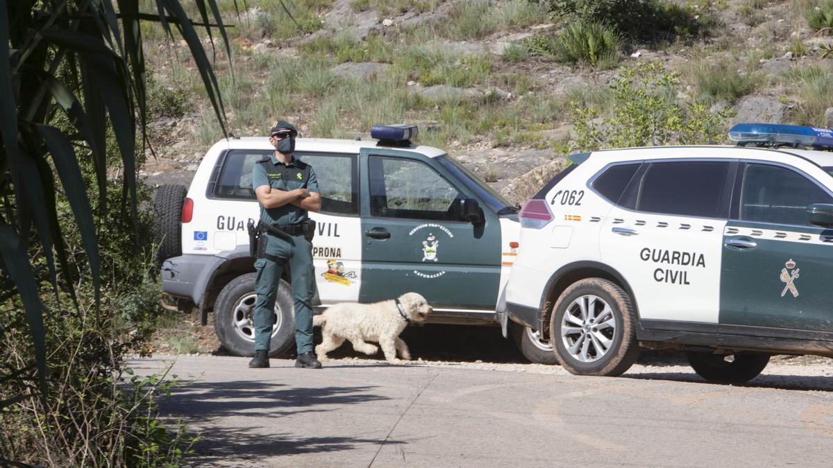 Junco, uno de los dos perros adiestrados en detectar restos biológicos que ha participado en esta nueva búsqueda de Marta Calvo