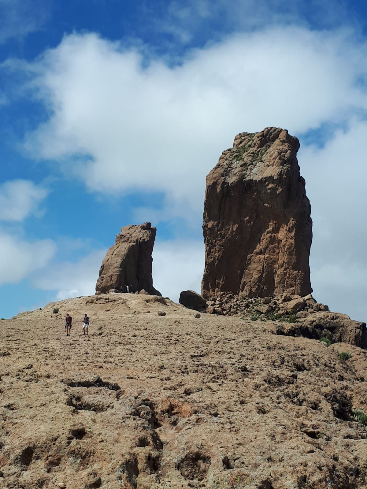 La primavera en Gran Canaria