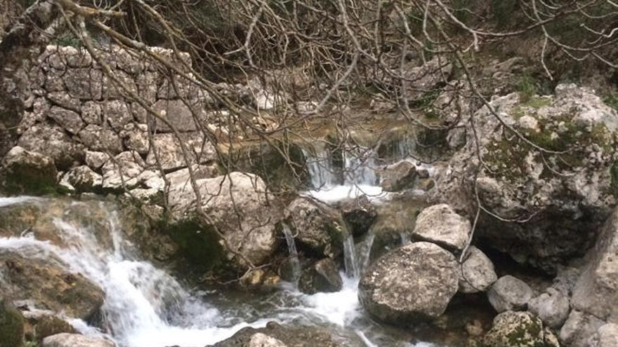 El agua nuestra de cada día (III)