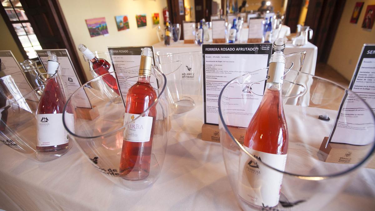 Degustación de vinos en la Casa del Vino de El Sauzal.