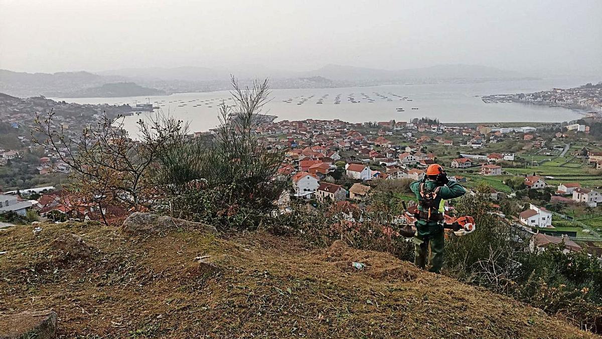 Trabajos de limpieza, esta semana en el Monte da Torre, con la ría de Vigo al fondo.