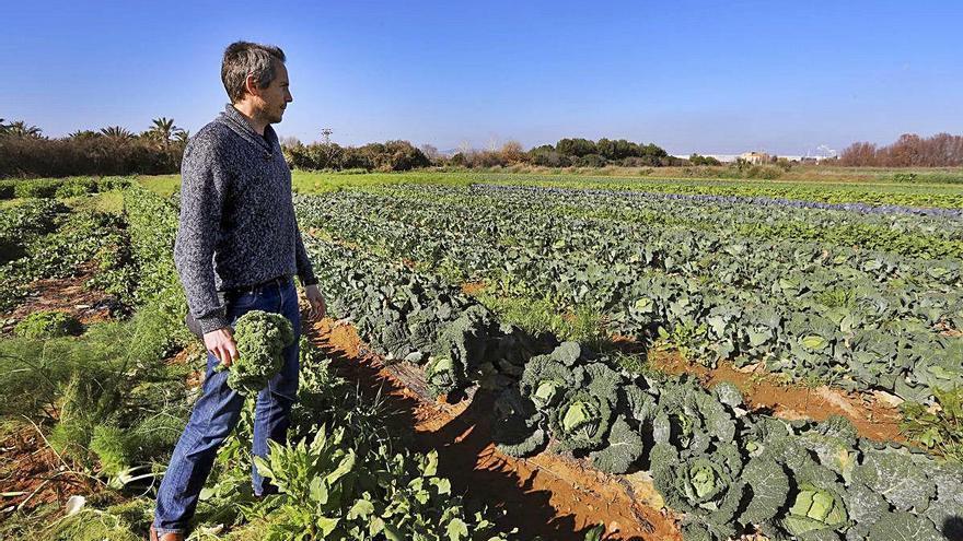 El campo pide a la distribución que no sustituya los productos autóctonos por foráneos