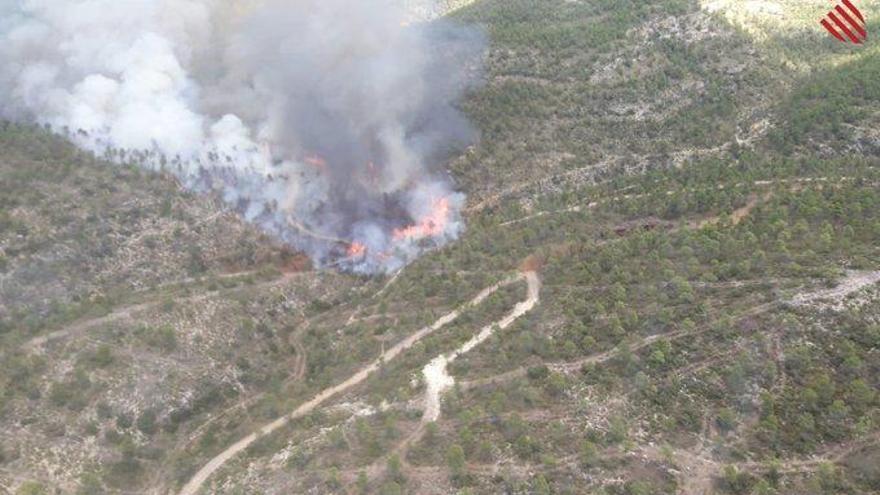 Dan por estabilizado el incendio forestal en Ayora