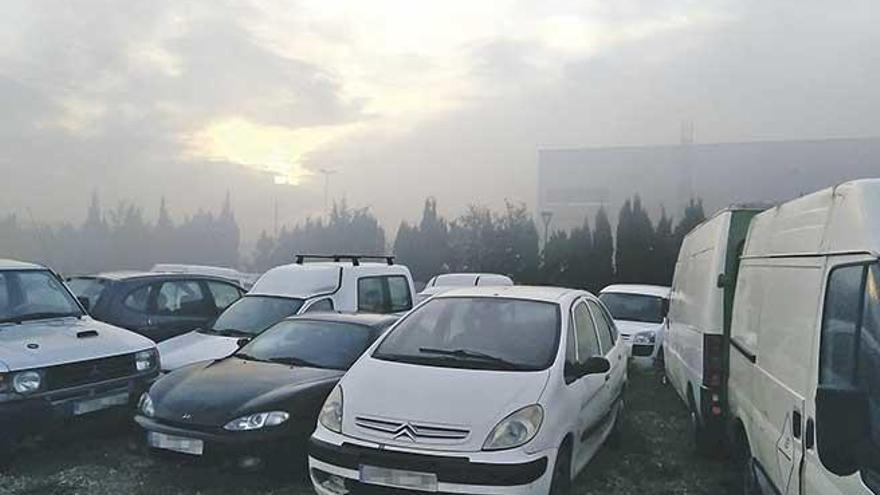 Ärger um Verbrennung von Grünabfällen an der Inca-Autobahn