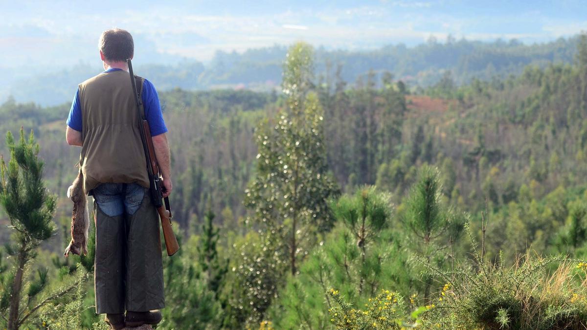 Un cazador en una jornada cinegética