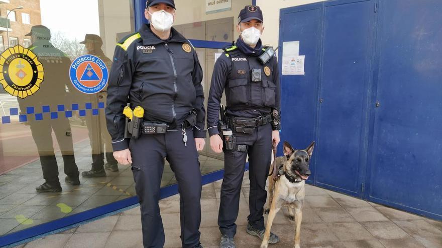 La Policia Local de Palafrugell incorpora una Unitat Canina