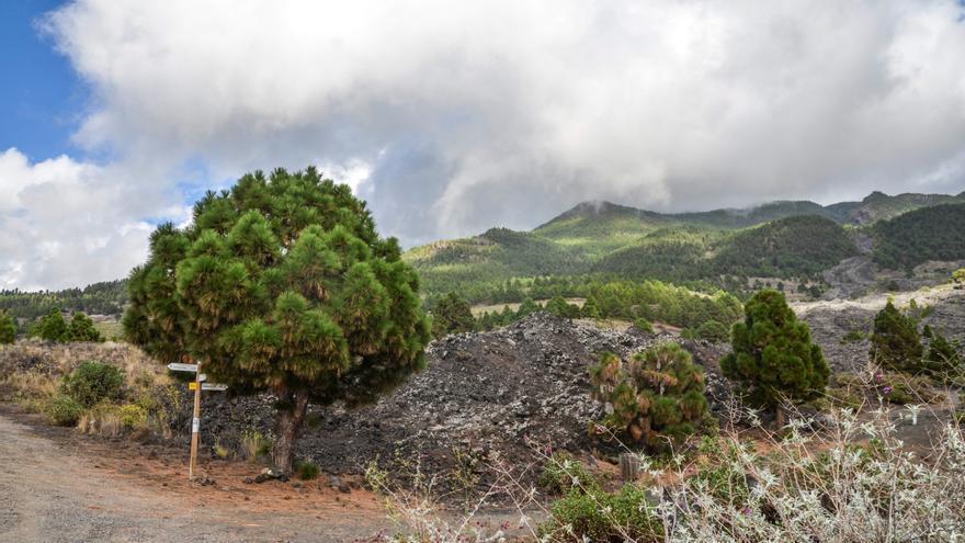 Una colada de lava comienza a afectar a las viviendas más cercanas al volcán