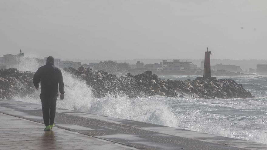 El viento provoca una veintena  de incidentes  en Mallorca
