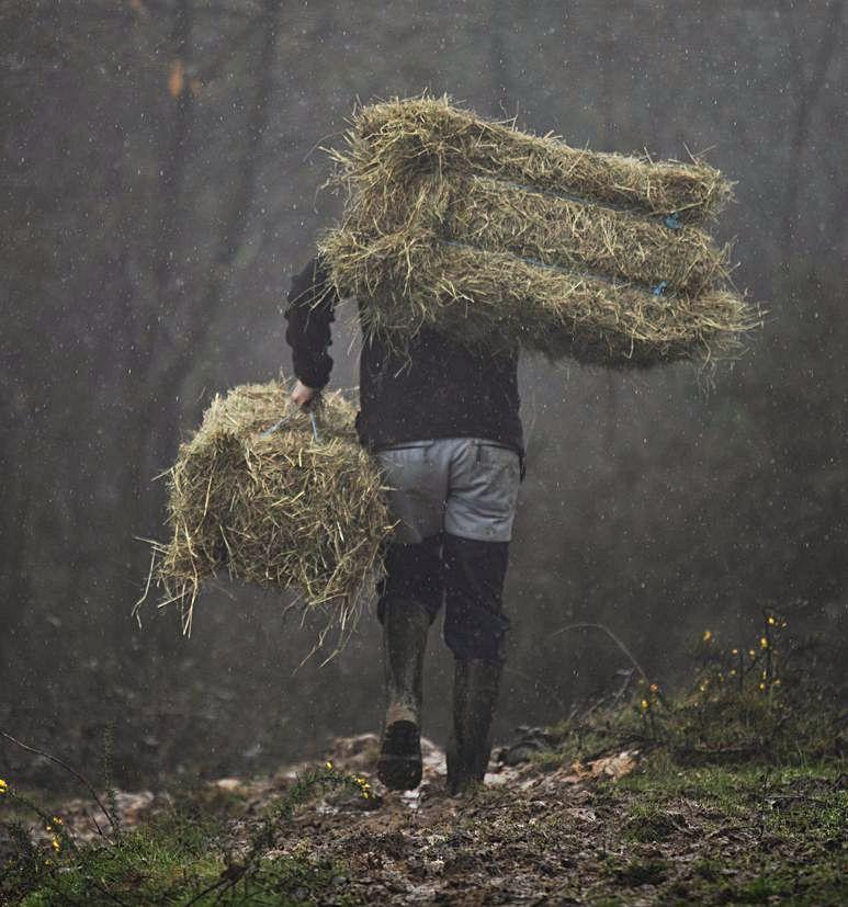 Marcos Remis con dos alpacas de hierba para repartir al ganado que pasta en la calle.