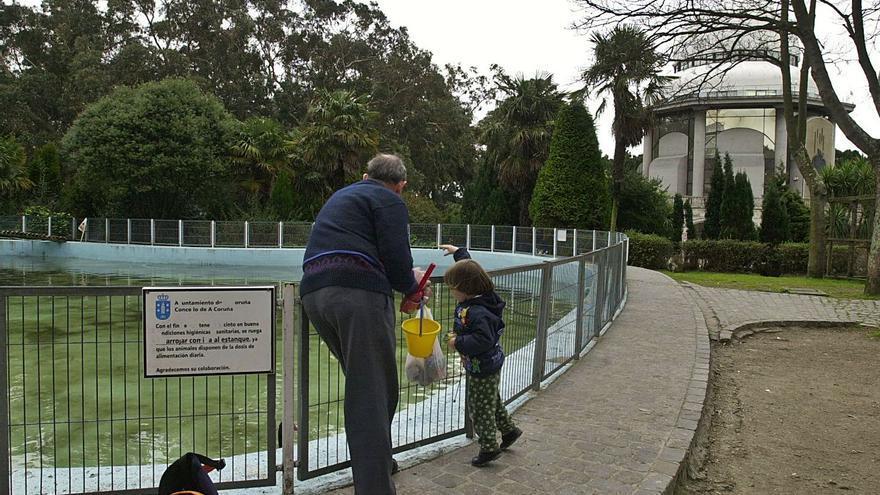 Galicia tendrá en 15 años un tercio menos de niños y 250.000 personas vivirán solas