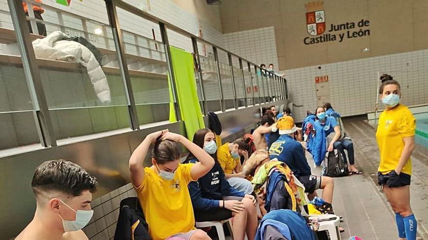 El Natación  Zamora vuelve por todo lo alto