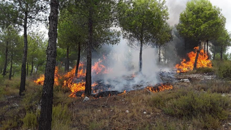 Un incendio forestal afecta a la sierra del Torrater de Ontinyent
