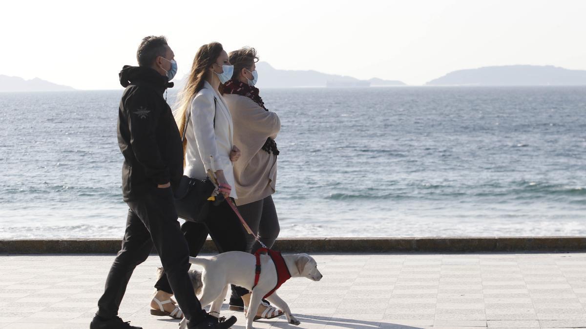 Tres personas pasean con su perro por Samil.