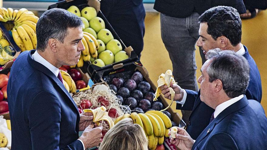Ensayo andaluz para el ring electoral