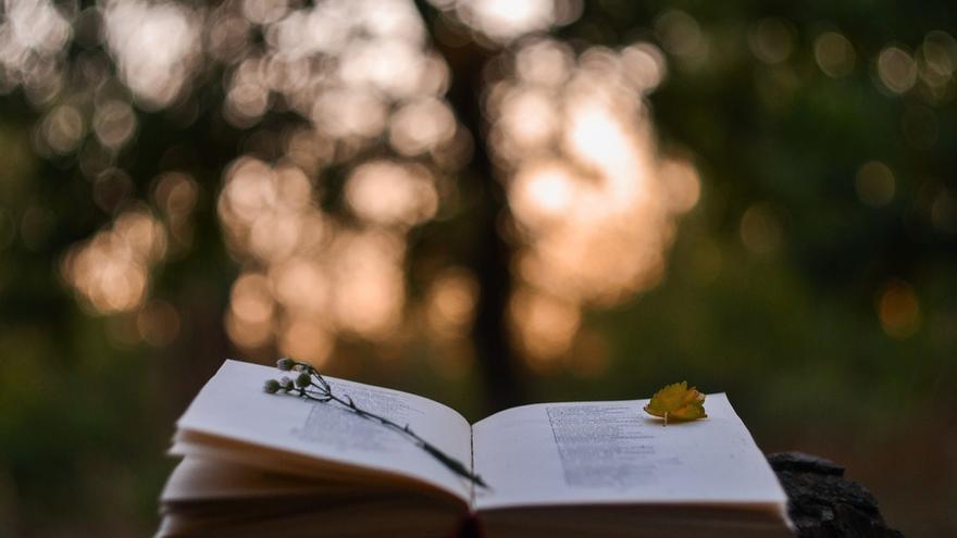 Versos para todos en el día de la poesía