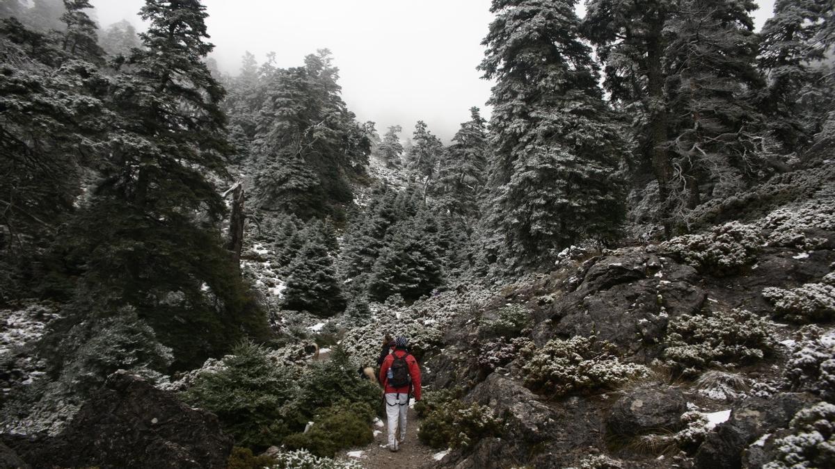 Una imagen de la Sierra De Las Nieves.
