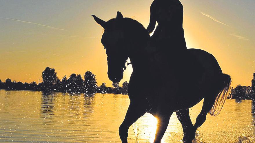 Al aire libre: las doradas playas de Calblanque a caballo
