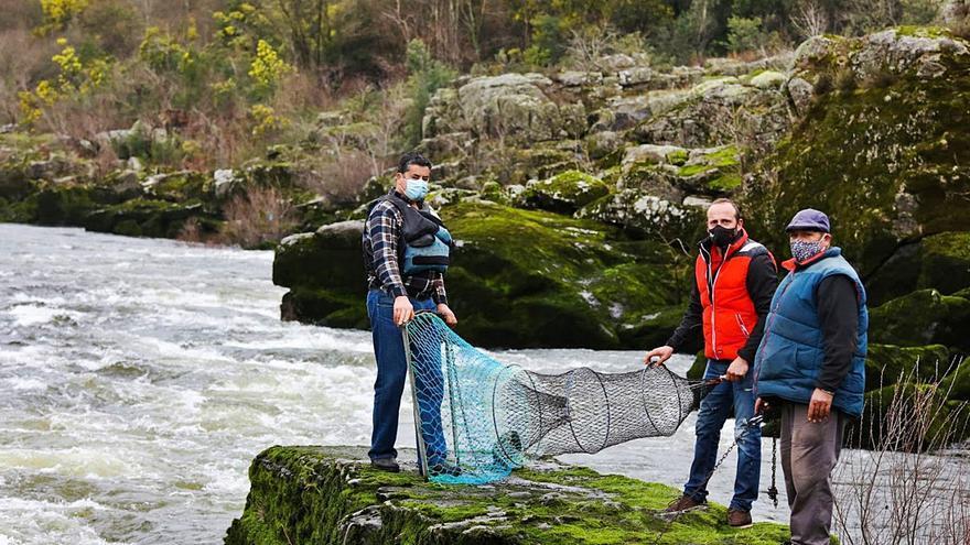 Los pescadores de Arbo montan las redes y exigen poder vender sus lampreas