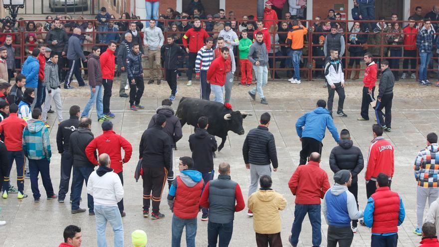 Villalpando recuperará en diciembre el toro de la Purísima