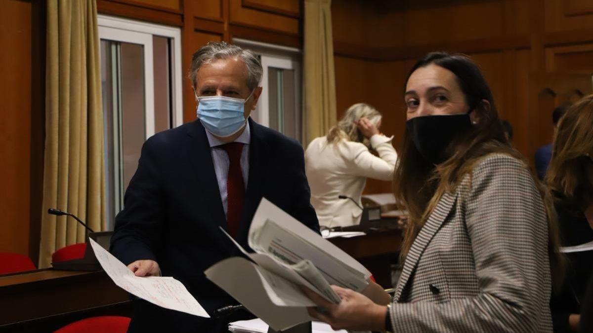 El delegado de Hacienda, Salvador Fuentes, y la portavoz de Vox, Paula Badanelli.