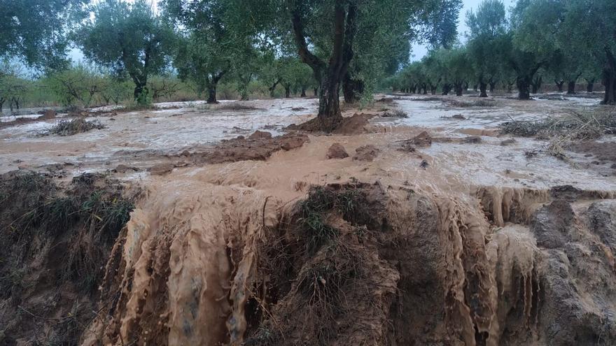 Las precipitaciones dejan hasta 50 litros por metro cuadrado en municipios como la Font de la Figuera