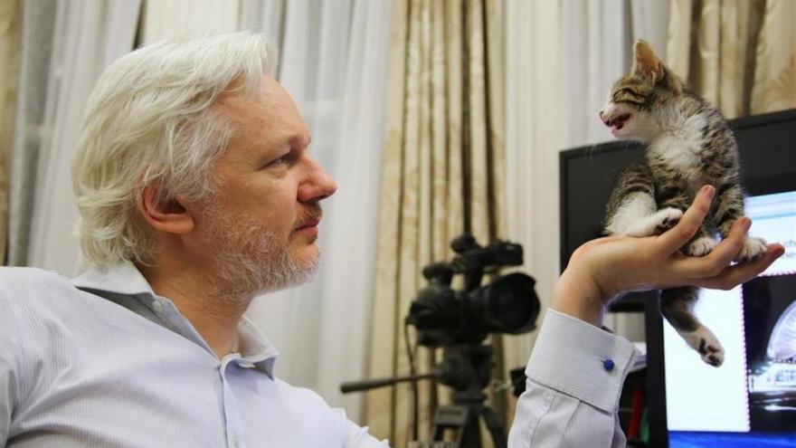 La fiscalía sueca cierra la investigación por violación contra Julian Assange